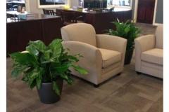 bank-interior-plants