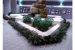 interior-lobby-plants