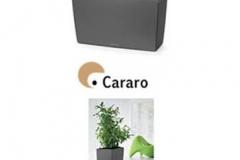 european-lechuza-cararo-container