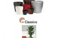 european-lechuza-classico-container