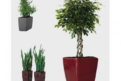 lechuza-european-planters
