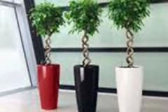 rondo-planters