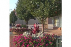 commercial-street-landscaping